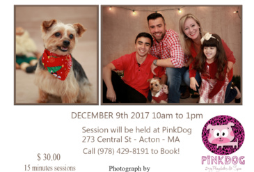 Holidays Family & Pets Picture Session